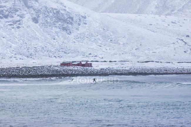 People surfing in sea below snowy hills in Lofoten, Norway — Stock Photo
