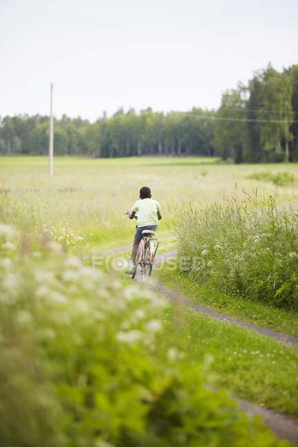 Rear view of boy cycling, soft focus background — Stock Photo
