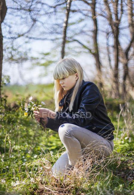 Дівчина збір квіти у ліс, вибіркове фокус — стокове фото