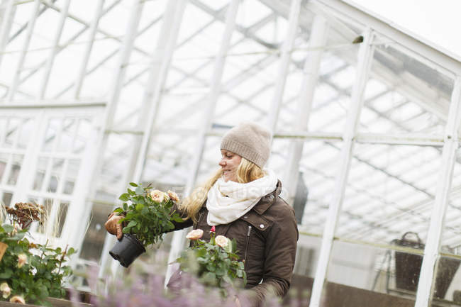 Woman choosing flowers at greenhouse, differential focus — Stock Photo
