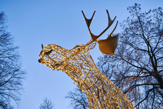 Low angle view of illuminated reindeer decorations — Stock Photo