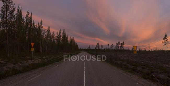 Vista panoramica della strada forestale al tramonto, contea di Vasterbotten — Foto stock