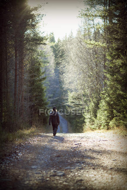 Rear view of boy walking in forest, selective focus — Stock Photo