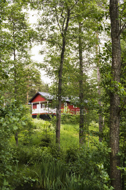Rural red house surrounded with trees in Sweden — Stock Photo