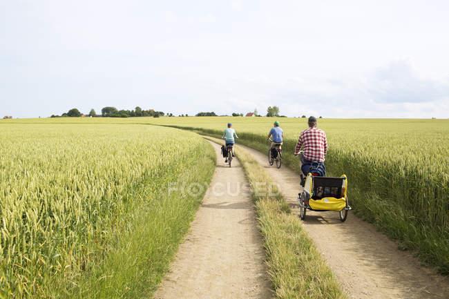 Visão traseira do ciclismo familiar no campo no verão — Fotografia de Stock