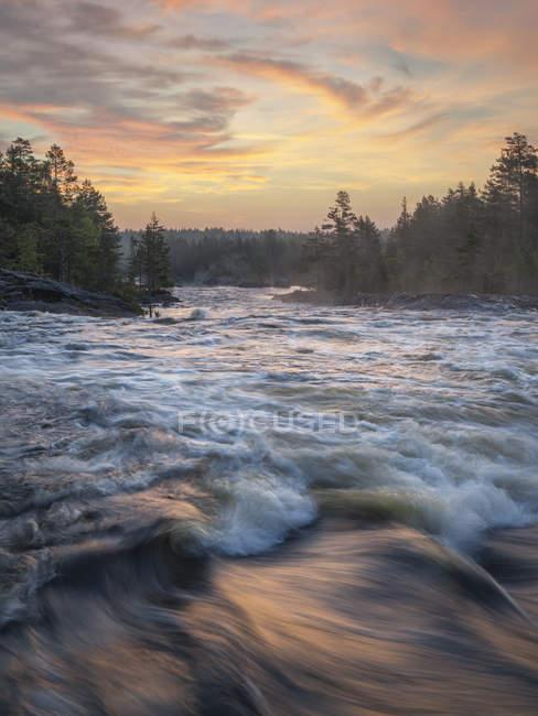 Vista panoramica del fiume nella foresta al tramonto — Foto stock