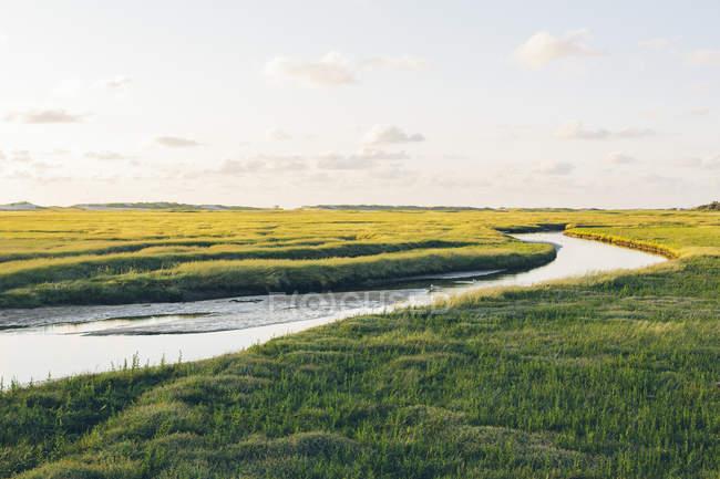 Vista panorámica del río en el campo al atardecer - foto de stock