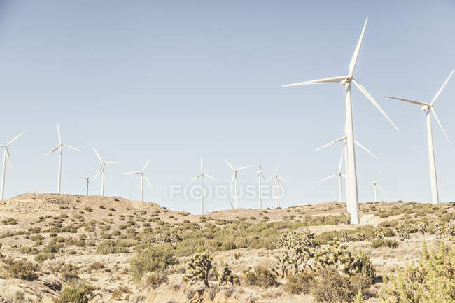 Wind field with wind turbines, producing energy under blue sky — Photo de stock