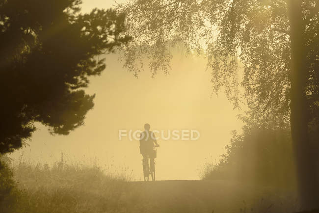 Scenic view of silhouette of person on bike at foggy forest — Stock Photo