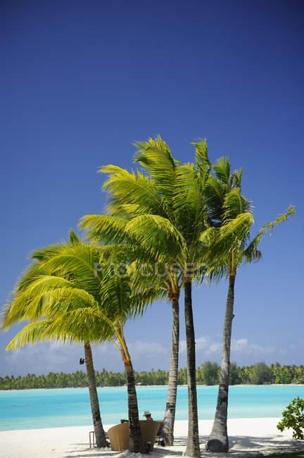 Donna seduta sulla spiaggia di Bora Bora — Foto stock