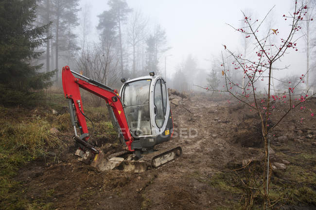 Bulldozer en Forêt brumeuse, europe du Nord — Photo de stock