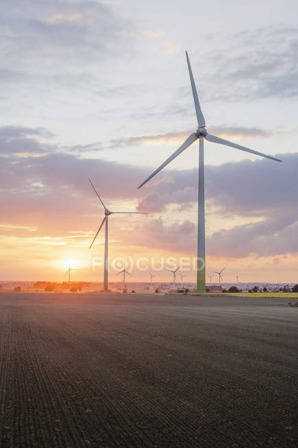 Windmills at farm at sunset, rural scene — Stock Photo