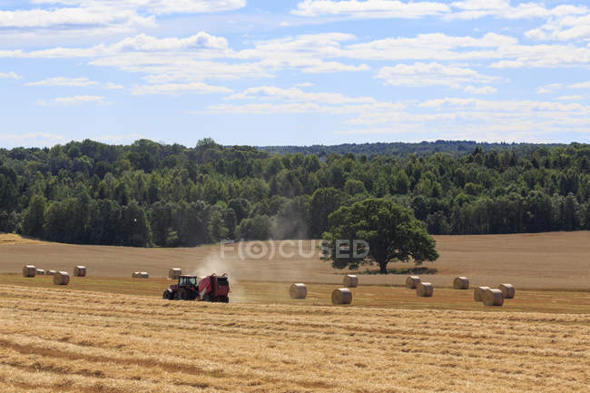 Tracteur dans champ de culture, scène rurale — Photo de stock