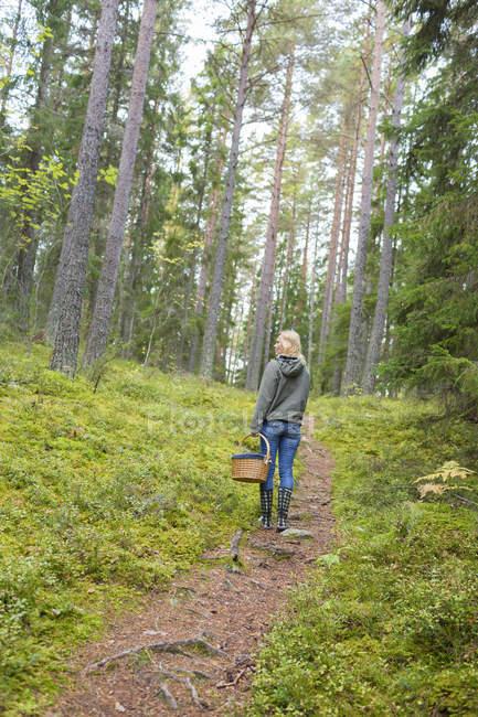 Vue arrière de la femme mûre explorant la forêt — Photo de stock