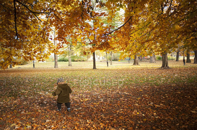 Boy walking park in autumn, selective focus — Stock Photo