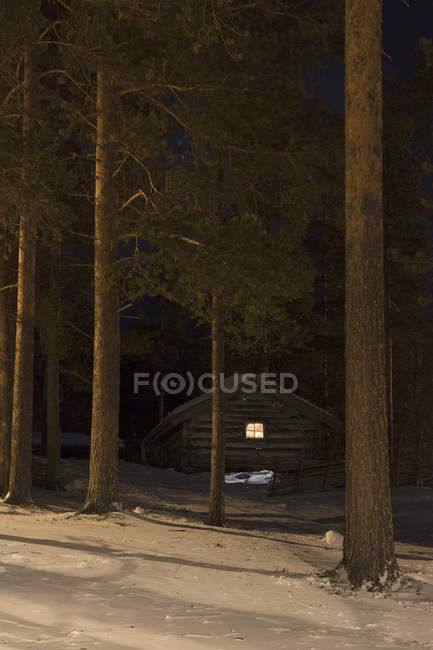 Scenic view of cabin at forest during winter — Stock Photo