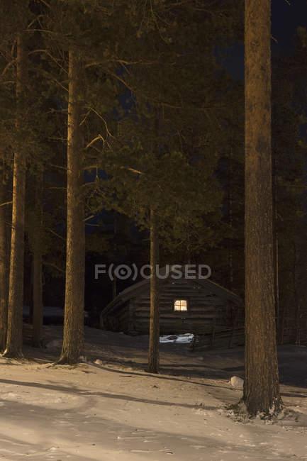 Vista panorâmica da cabana na floresta durante o inverno — Fotografia de Stock