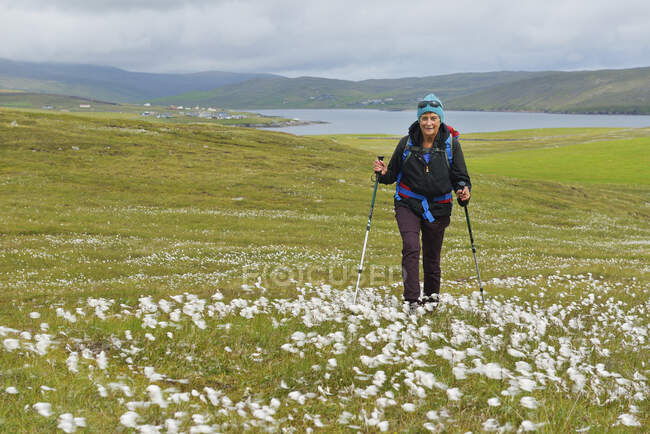Женщина в походе в Хиллсвике, Шотландия — стоковое фото