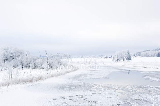 Scenic view of frozen river in winter — Stock Photo
