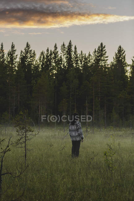 Rear view of woman on field — Stock Photo