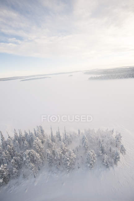 Trees and frozen lake in winter, Sweden — Stock Photo