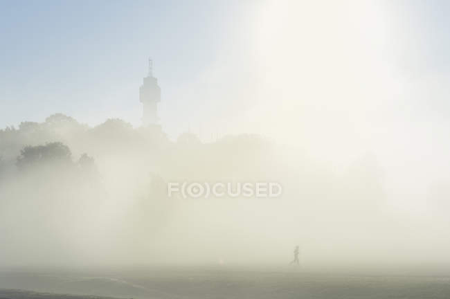 Fog over field, selective focus — Stockfoto