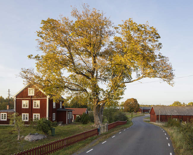 Scenic view of houses along rural road — Stock Photo