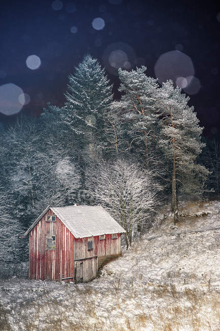 Wooden hut in winter forest, lens flare — Stock Photo