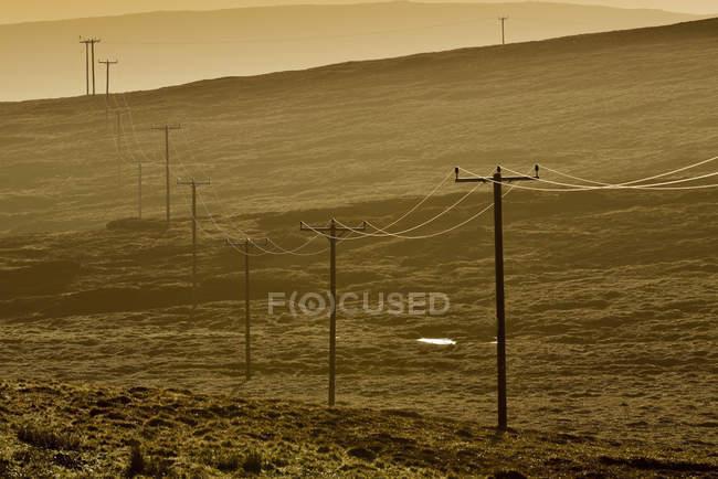 Linee elettriche in esecuzione campo trogolo — Foto stock