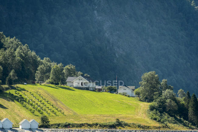 Scenic view of houses on hill, northern europe — Stock Photo