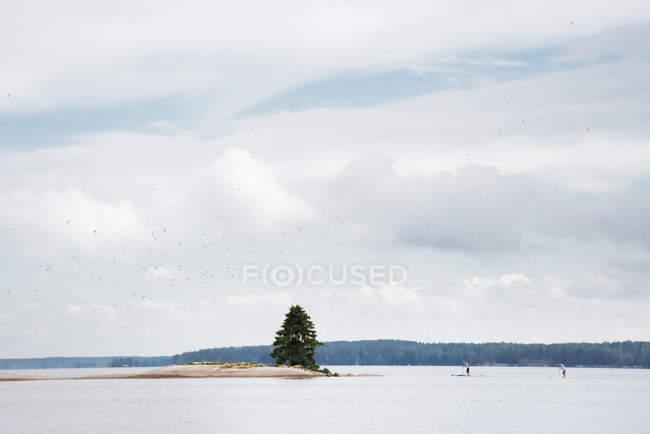 Чоловік, що конкурують на paddleboards під небом з хмар — стокове фото