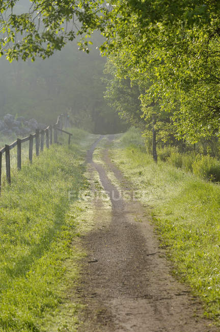 Wooden fence along country road at Europe — Stock Photo