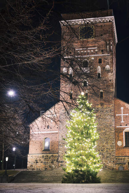 Christmas tree in front of Turku Cathedral at night — Stock Photo