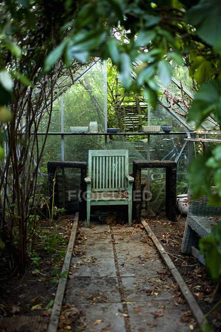 Silla y mesas de madera en invernadero, enfoque selectivo - foto de stock
