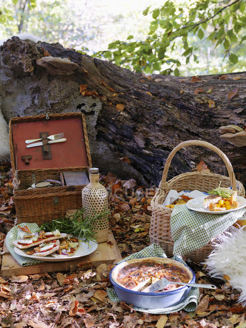 Picknick im Wald im Herbst, Fokus auf Vordergrund — Stockfoto
