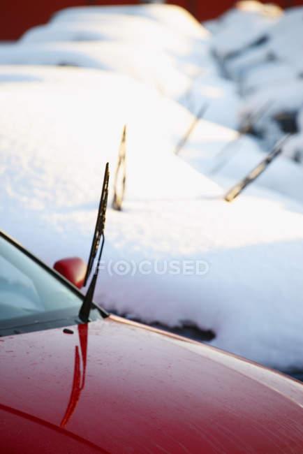 Автомобили покрытые снегом с одним чистым — стоковое фото