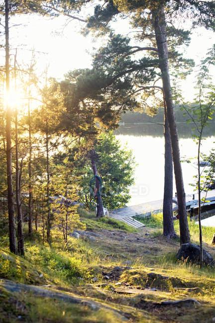 Steg über See mit grünen Bäumen im Vordergrund — Stockfoto