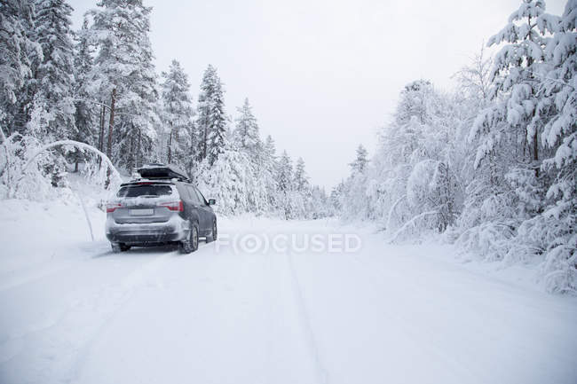 Vista traseira do carro na floresta na neve — Fotografia de Stock