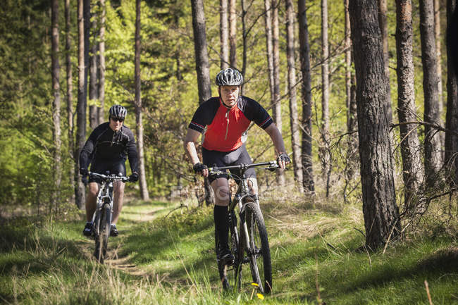Mature men riding on mountain bikes through forest — Stock Photo