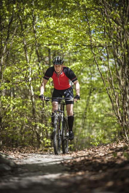 Mature man riding on mountain bike through forest — Stock Photo