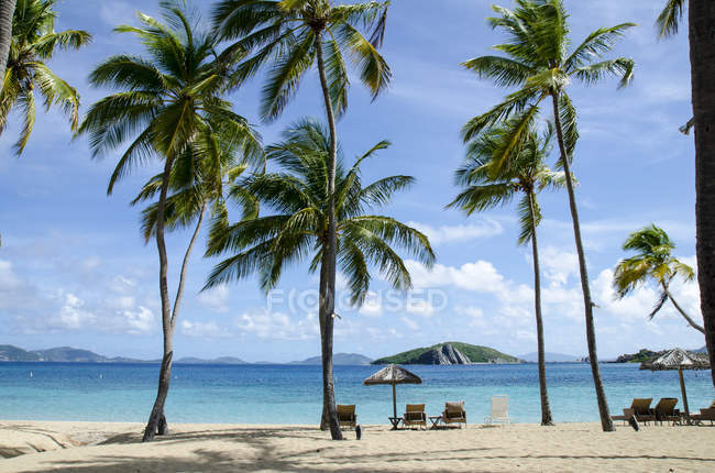 Deckchairs and beach umbrellas under palm trees on Peter Island in Caribbean — Stock Photo