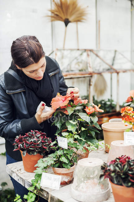 Young woman potting plants in  plant nursery - foto de stock