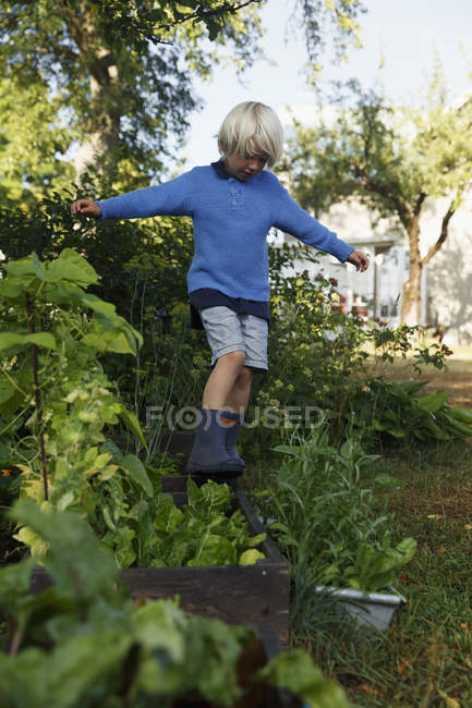 Boy playing in garden, focus on foreground — Stock Photo