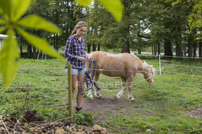 Agricultural worker holding rope next to pony, selective focus — Stock Photo