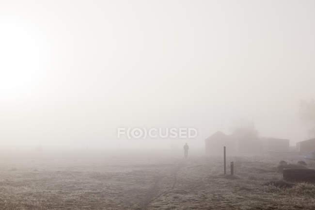 Person walking through misty field in Kampinge, Sweden — Stock Photo