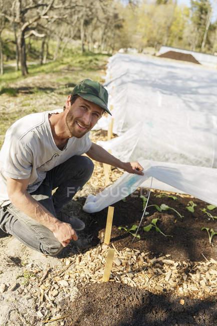 Jardinero trabajando en el vivero de plantas y mirando la cámara - foto de stock