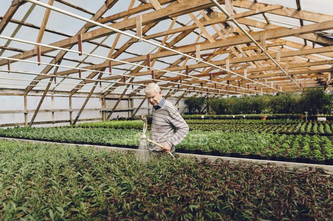Giardino centro lavoratori irrigazione giardino, focus selettivo — Foto stock