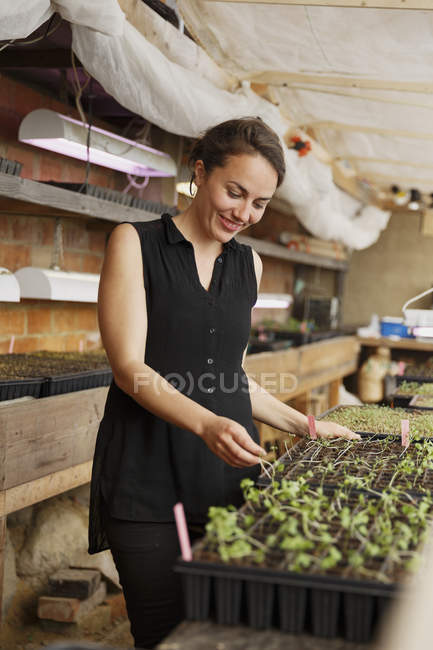 Mid adult woman at plant nursery, focus on foreground — Stock Photo