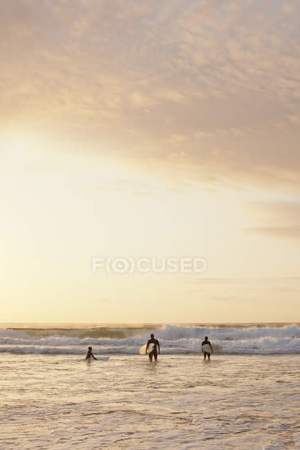Three people going for surf at Bondi Beach at sunrise — Stock Photo