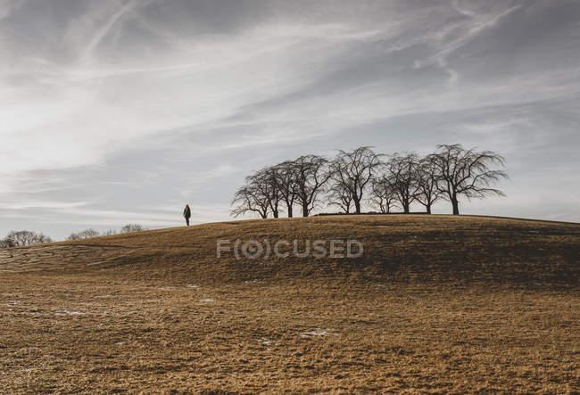 Человек, стоящий на холме в Энскеде, Швеция — стоковое фото